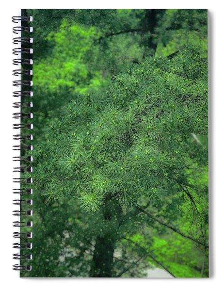 Ever Green Spiral Notebook