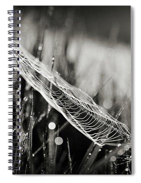 Everything Spiral Notebook