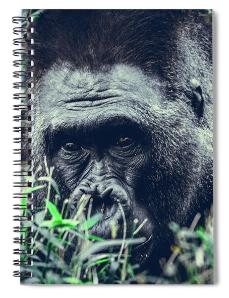 Eyes Speak Spiral Notebook
