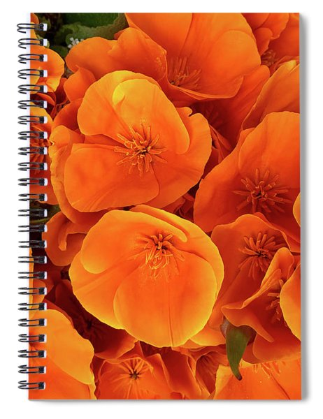F22019 Spiral Notebook