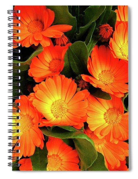 F32019 Spiral Notebook