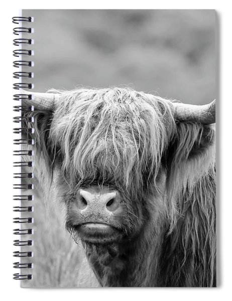 Face-to-face With A Highland Cow - Monochrome Spiral Notebook