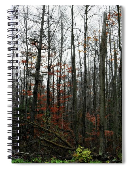 Fading Fall Spiral Notebook