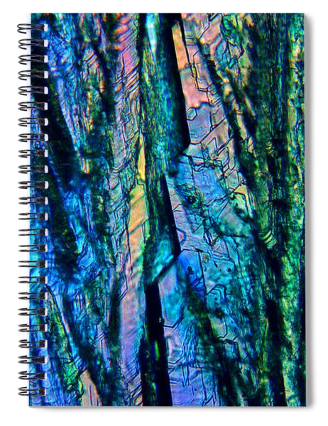 Fading Splendor Spiral Notebook