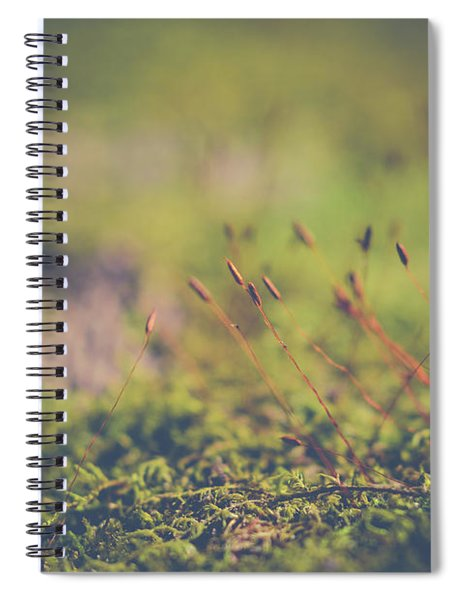 Fairy Hunt Spiral Notebook