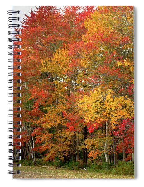 Spiral Notebook featuring the photograph Fall Colors by Doug Camara