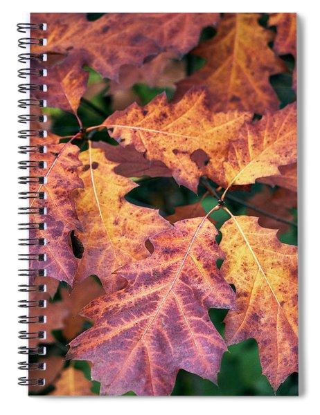 Fall Flames Spiral Notebook