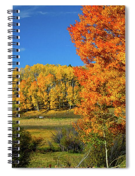Fall In The Elks Spiral Notebook