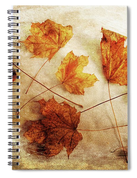 Fall Keepers Spiral Notebook