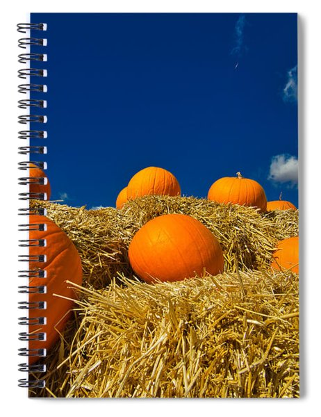 Fall Pumpkins Spiral Notebook