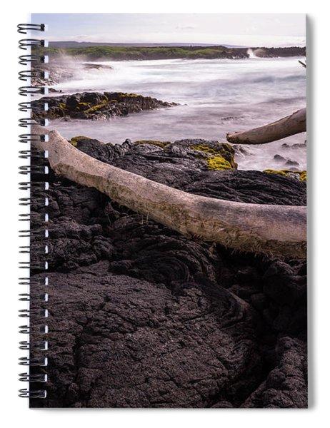 Fallen Tree At Punalu'u Beach Spiral Notebook