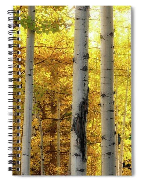Fall's Visitation Spiral Notebook by Rick Furmanek