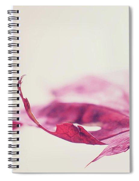 Fancy Flight Spiral Notebook