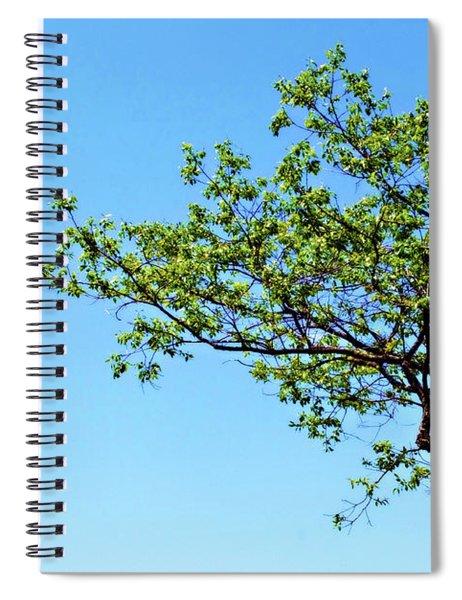 Far Reaching Spiral Notebook