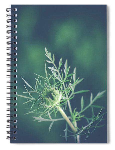 Fascinate Spiral Notebook