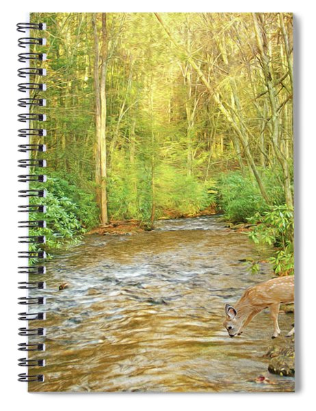 Fawn Drinking From Stream Spiral Notebook