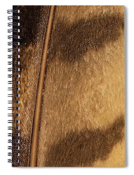Feathers Weave Spiral Notebook