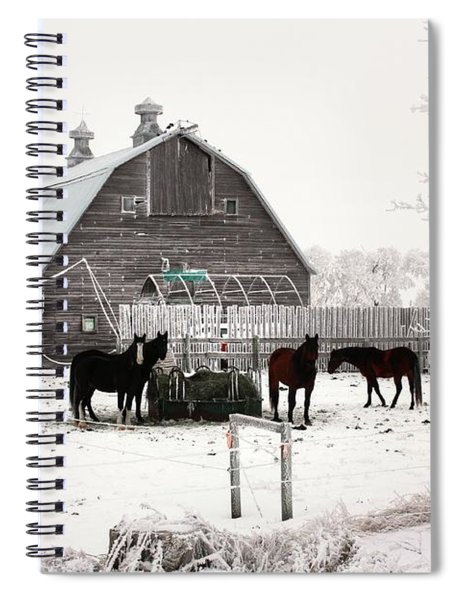 Feed Spiral Notebook