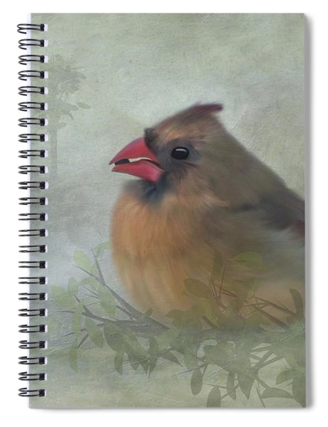 Female Cardinal With Seed Spiral Notebook