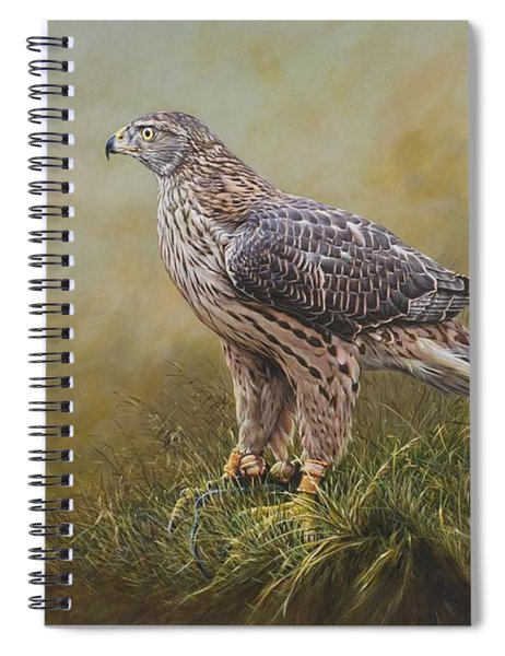 Spiral Notebook featuring the painting Female Goshawk Paintings by Alan M Hunt
