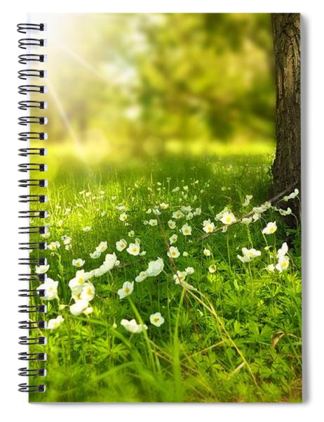 Field Of Daisies Spiral Notebook