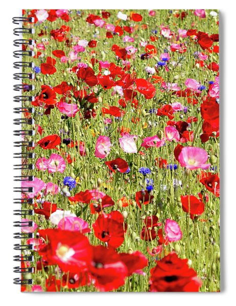 Field Of Red Poppies Spiral Notebook