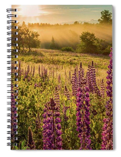 Fields Of Lupine Spiral Notebook
