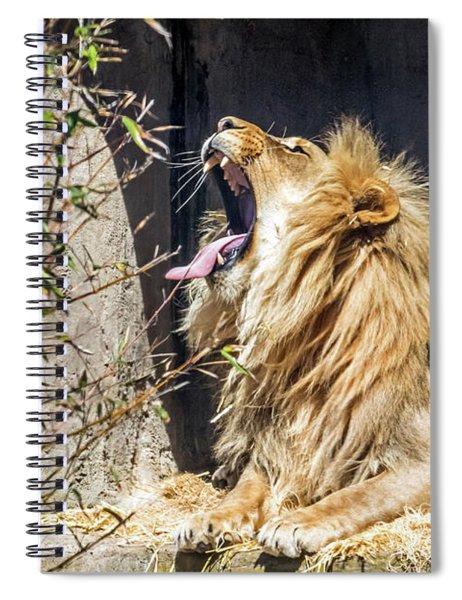 Fierce Yawn Spiral Notebook