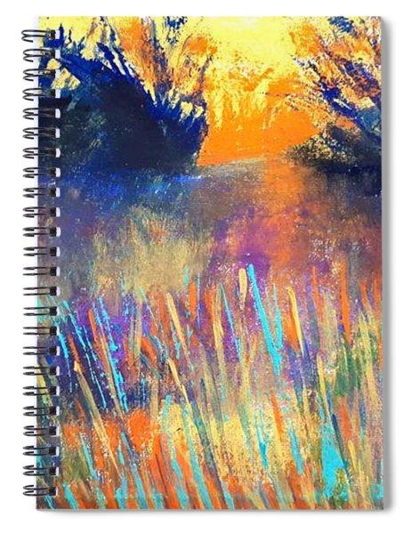 Fiery Marsh Spiral Notebook