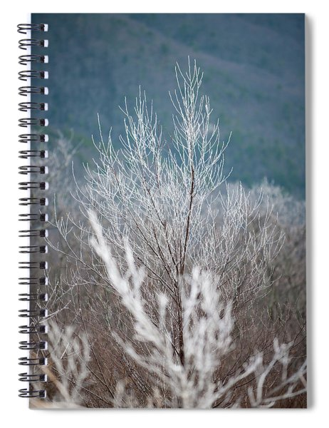 Fingers Of Hoarfrost Spiral Notebook