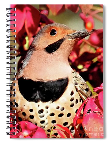 Yellow-shafted Flicker Spiral Notebook