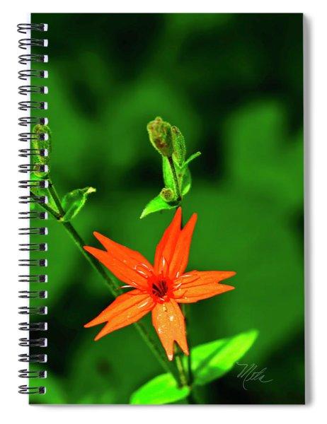 Fire Pink Spiral Notebook