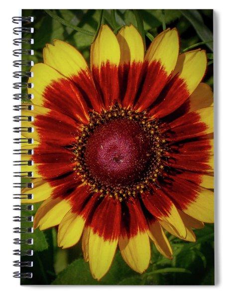 Firewheel Spiral Notebook