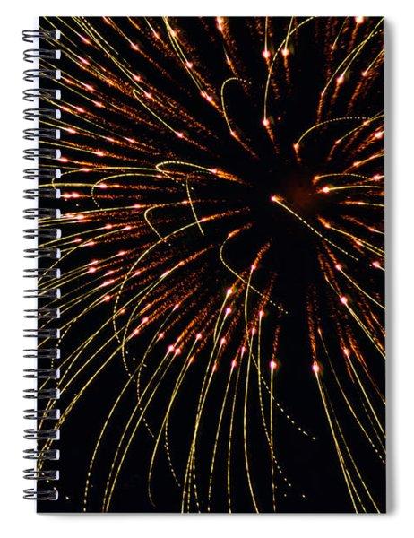 Fireworks Bad Hair Day Spiral Notebook