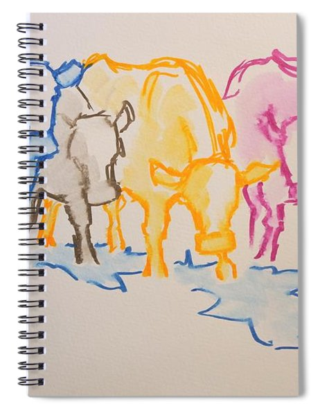 Five Cows Five Colors Watercolor Line Drawing Spiral Notebook