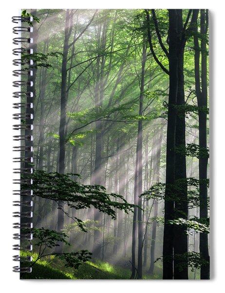 Fleeting Beams Spiral Notebook