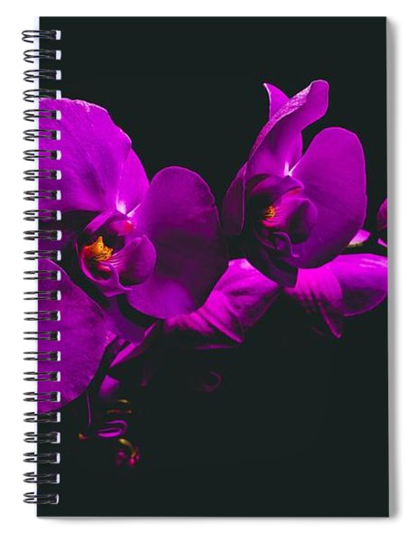 Floating Purple Orchid Spiral Notebook
