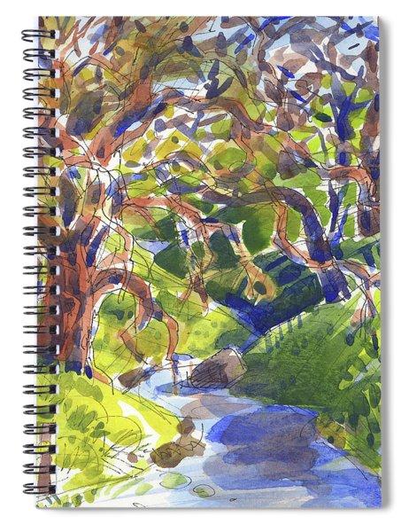 Flooded Trail Spiral Notebook