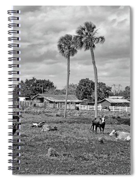 Florida Farmscape Spiral Notebook
