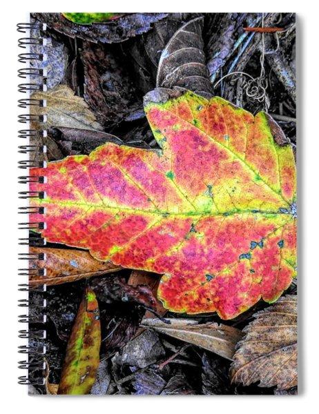 Florida Foliage Spiral Notebook