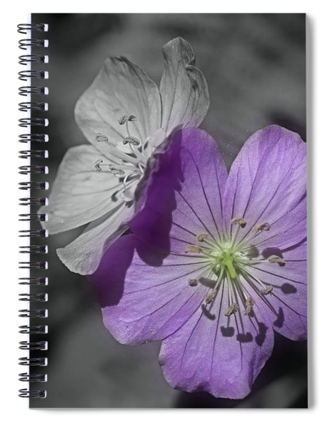 Flower Friends In Black And White Spiral Notebook