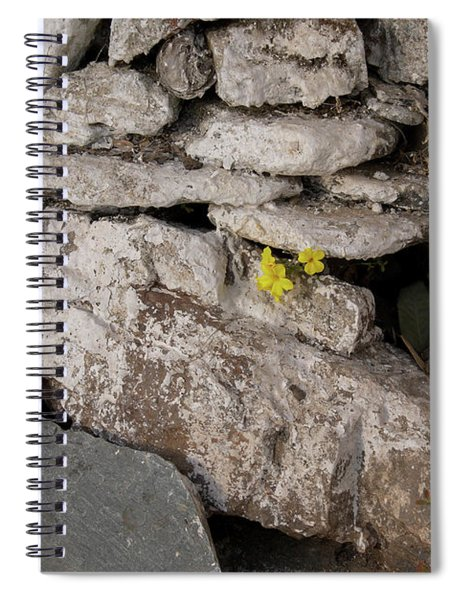 Flower In The Rocks Along The Kora In  Mcleod Ganj Spiral Notebook