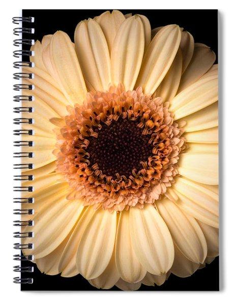 Flower Over Black Spiral Notebook