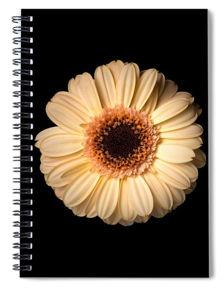 Spiral Notebook featuring the photograph Flower Over Black by Mirko Chessari