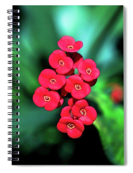 Flower Parade Spiral Notebook
