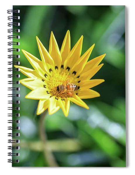 Yellow Flowers And A Bee Spiral Notebook