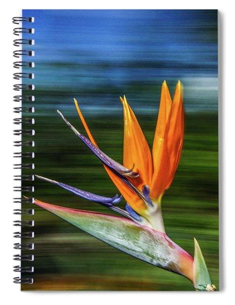 Flying Bird Of Paradise Spiral Notebook