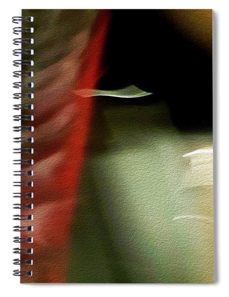 Flying Carpet Spiral Notebook