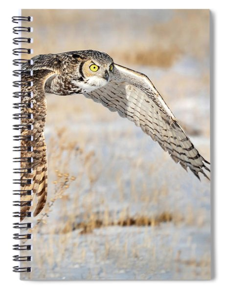 Flying Great Horned Owl Spiral Notebook