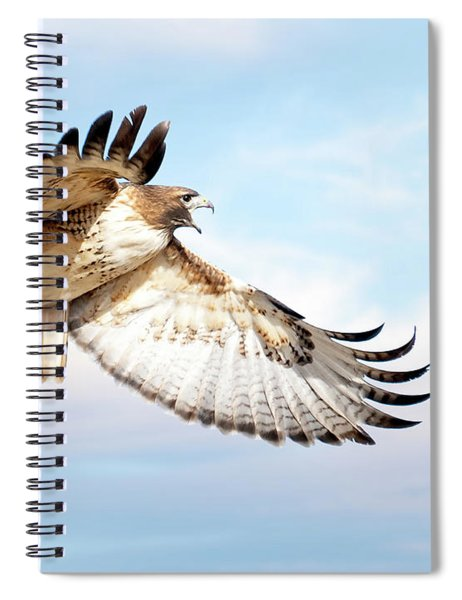 Flying Red-tailed Hawk Spiral Notebook